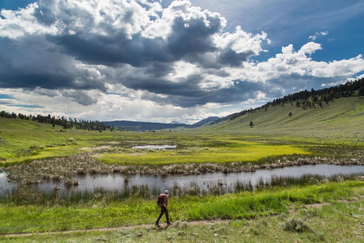 Hiking on the Blacktail Deer Plateau
