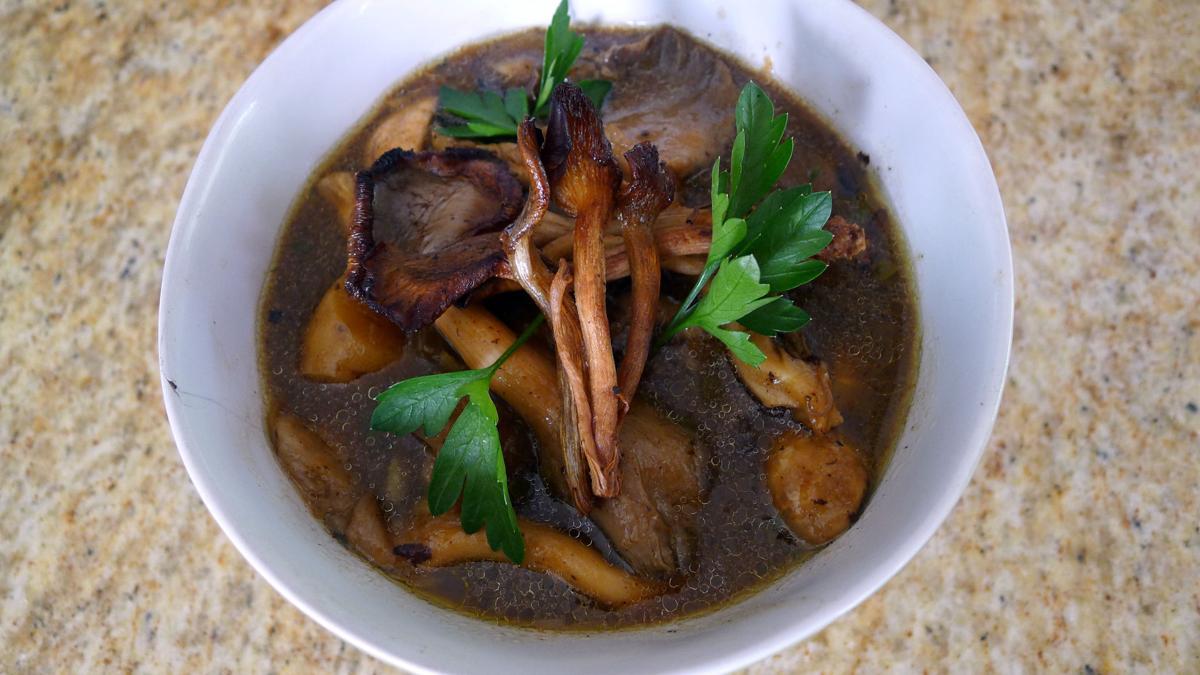 ari mushrooms 1.jpg