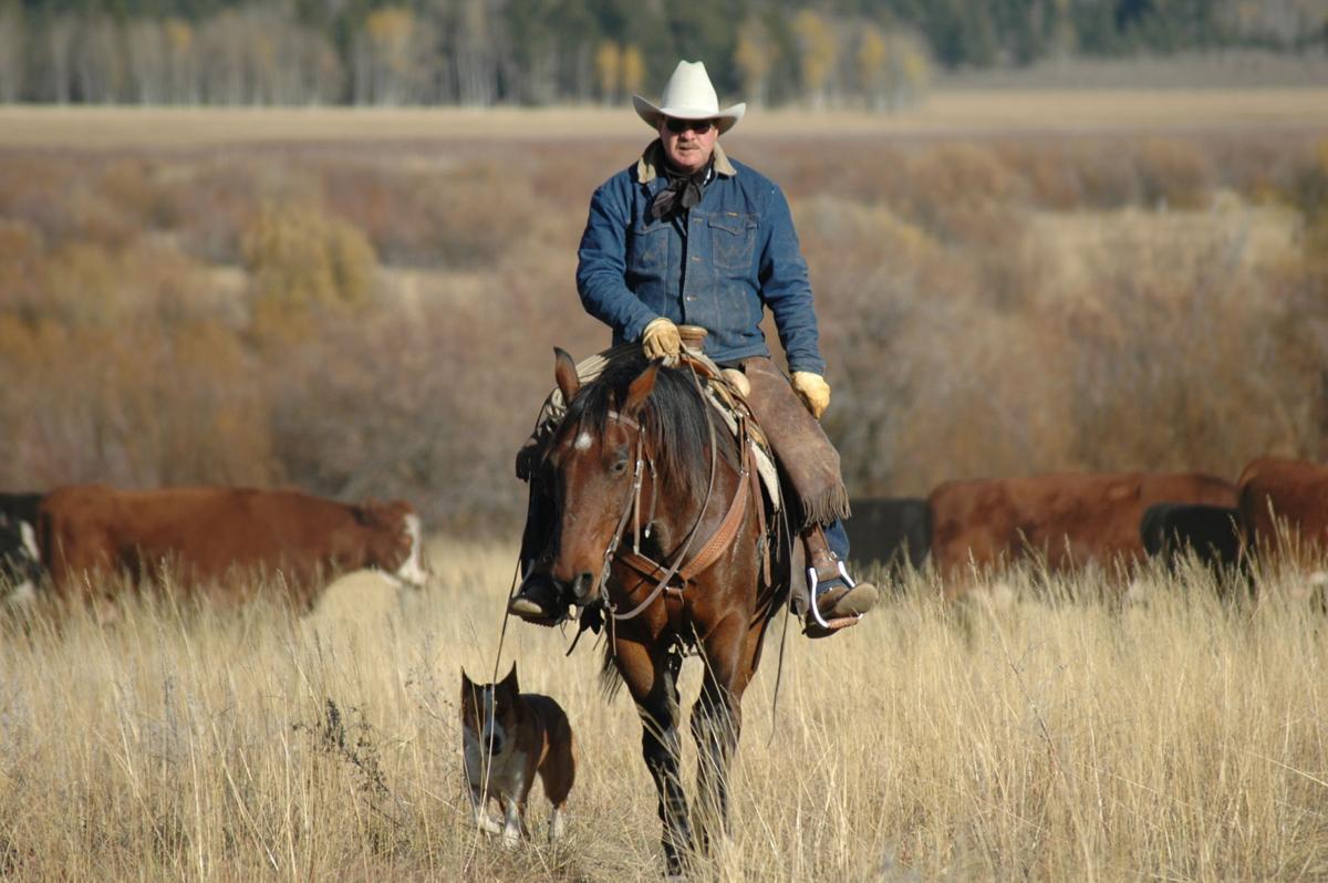 Nick Hillman rides through his ranch
