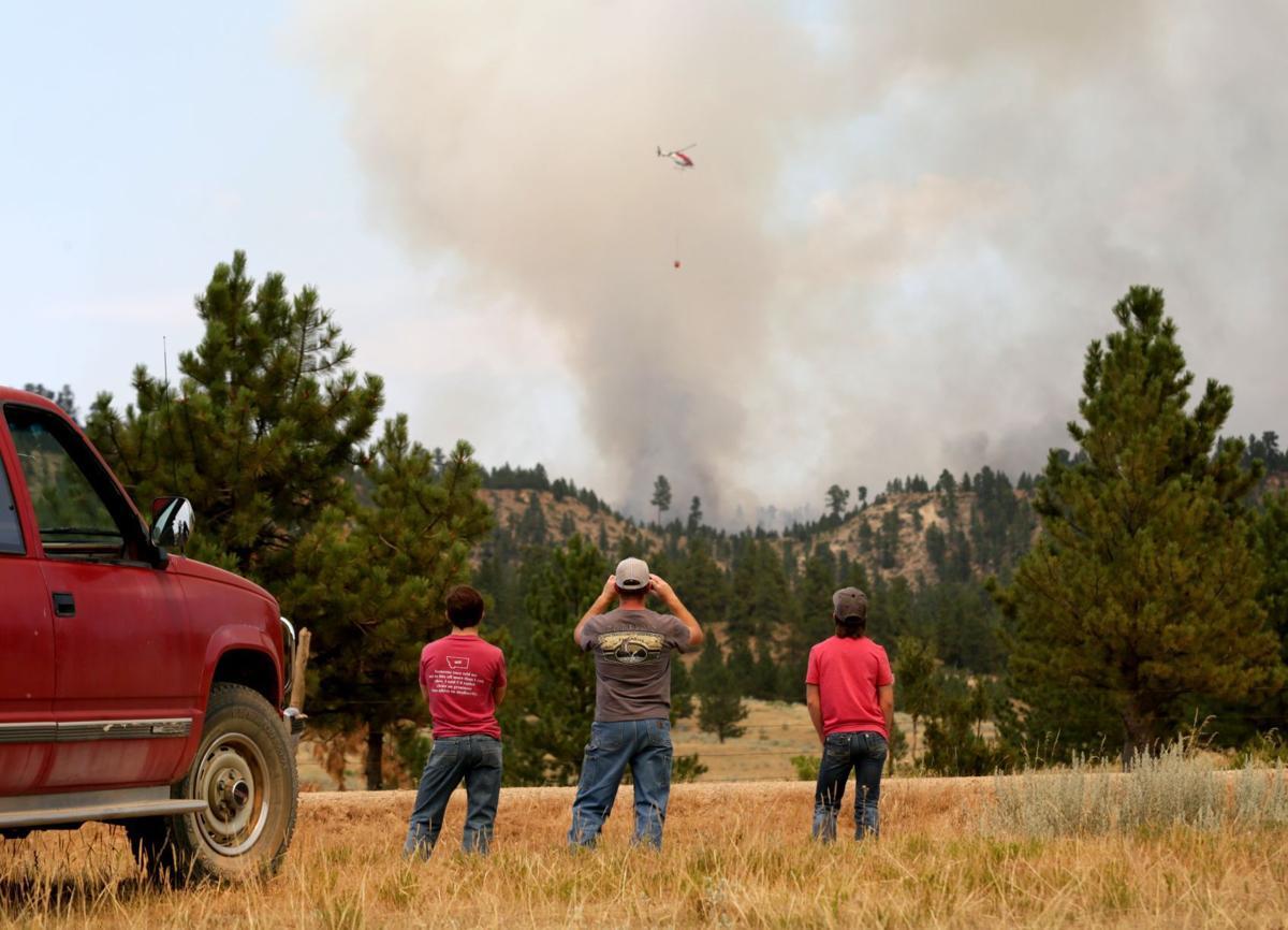 Bruner Mountain Fire