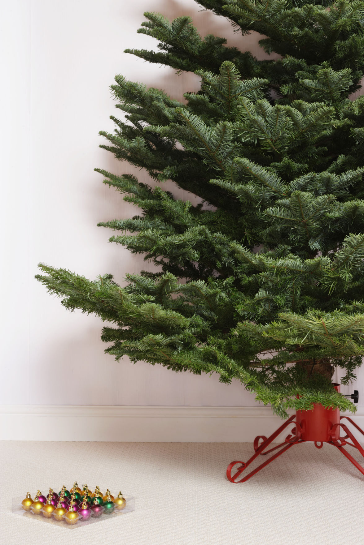 How to care for your christmas tree montana news billingsgazette keep watch on the trees water solutioingenieria Choice Image