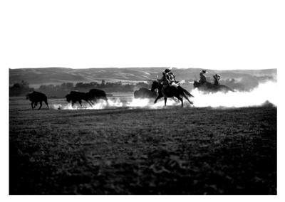 Sioux buffalo hunt