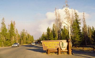 Yellowstone's chief ranger in 1988, Dan Sholly stands by decisions made on fires