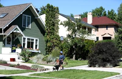 Cara Schaer walks her dog Zeke