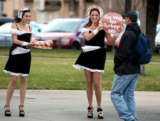 PETA pilgrims say turkey's done