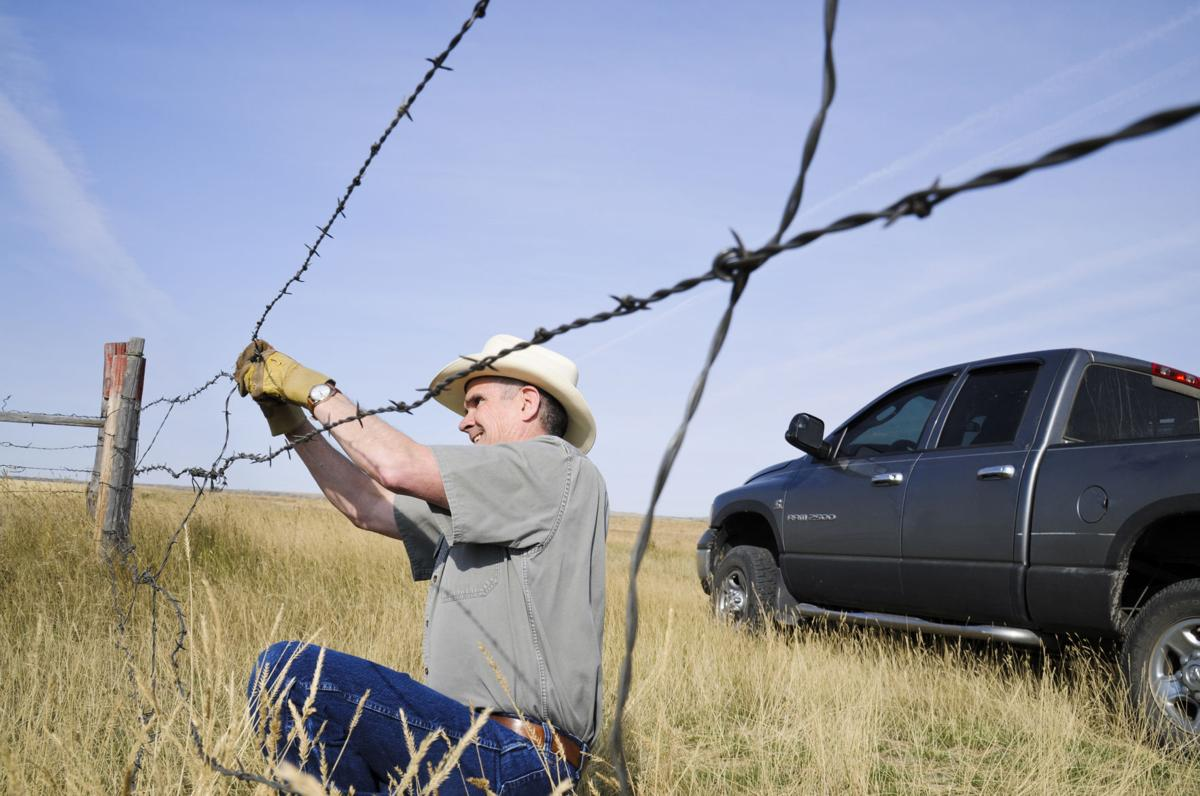 Rosendale fixes fence