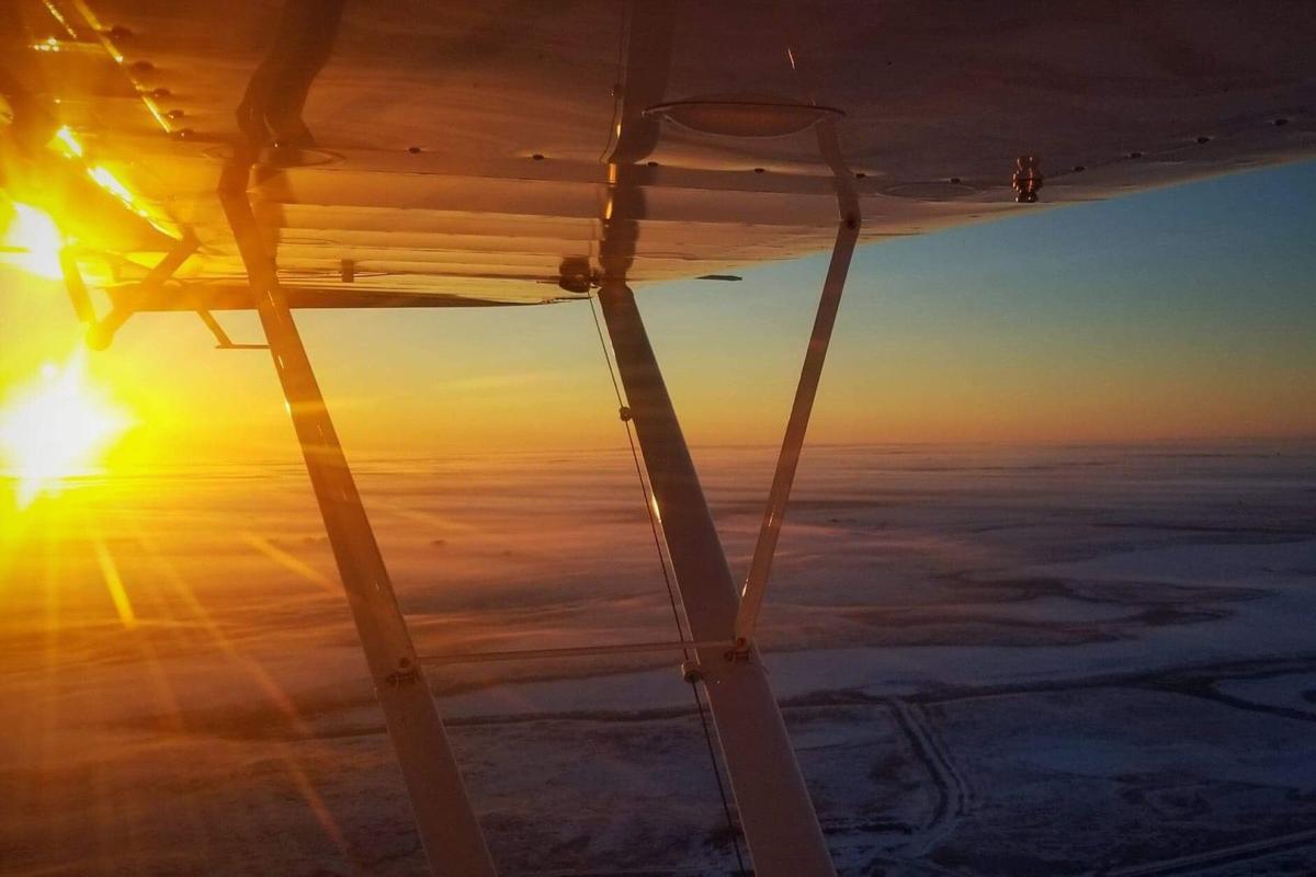 Aerial surveys flow