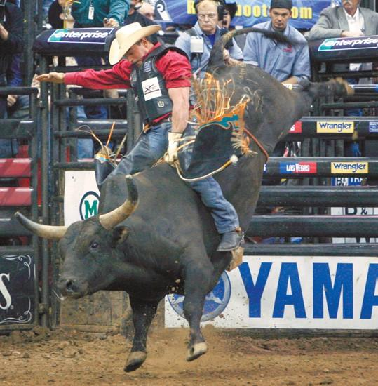 Legendary bull rider embarks on farewell tour | Sports ...Adriano Moraes Bull Rider