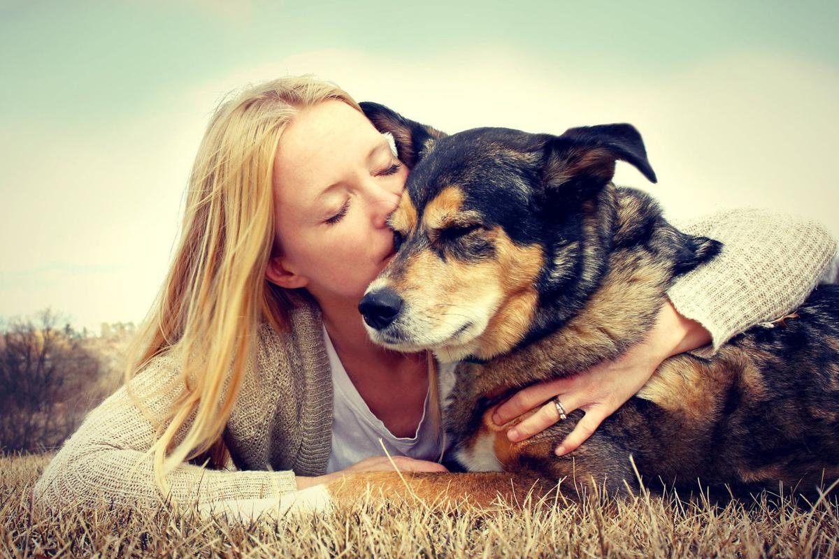 Travel The World And Take Care Of People's Pets