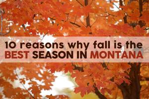 10 reasons why fall is the best season in Montana