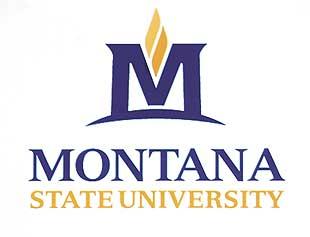 New MSU logo designs unveiled