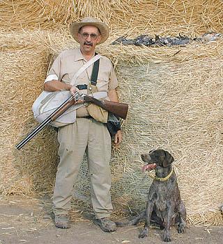 Henckel: Dove hunting starts with a bang, bang-bang