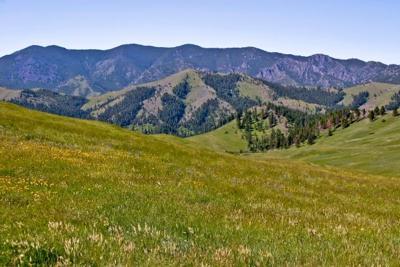 Dana Ranch