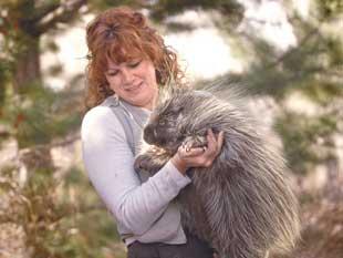 Unwanted Exotic Animals Too Often Dumped At Zoo Vets Pet Stores Local News Billingsgazette Com