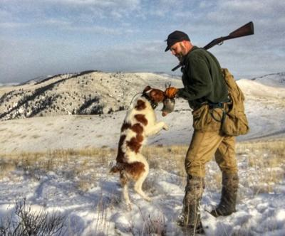 partridge hunt