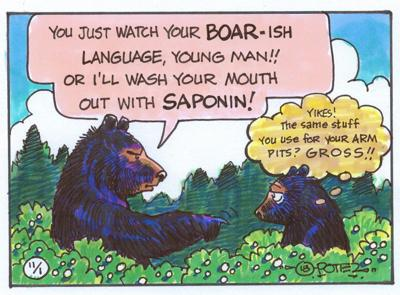Bear soap