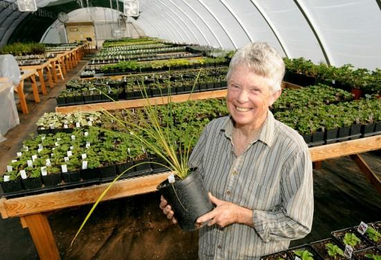 Billings Greenhouse Operator Opens Nursery