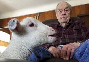 Grandpa had a little lamb: Sick newborn finds home with Great Falls couple