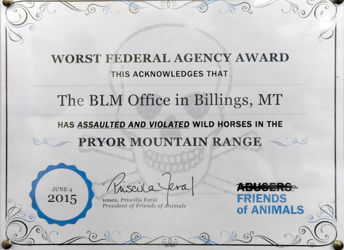 Police Called As Group Protests Wild Horse Contraceptives Montana