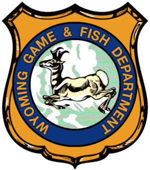 Game and fish stocks tiger trout in lower sunshine for Wyoming game and fish license