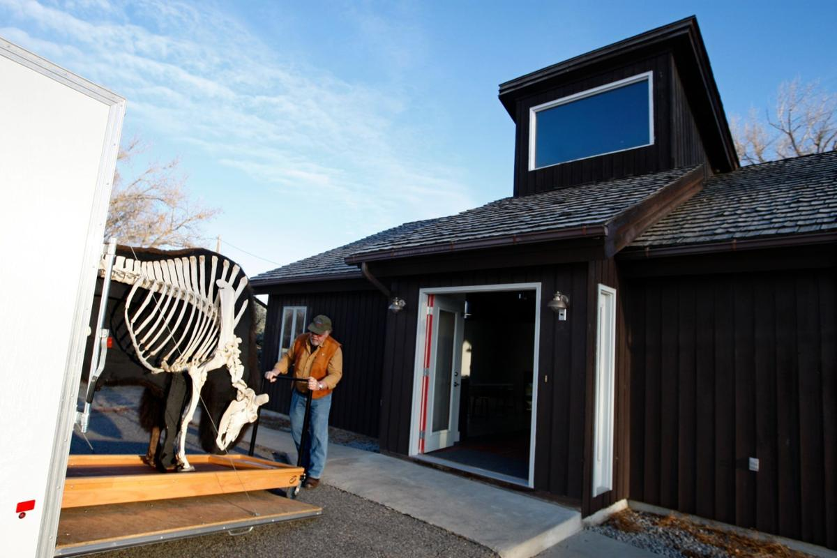 Bison museum