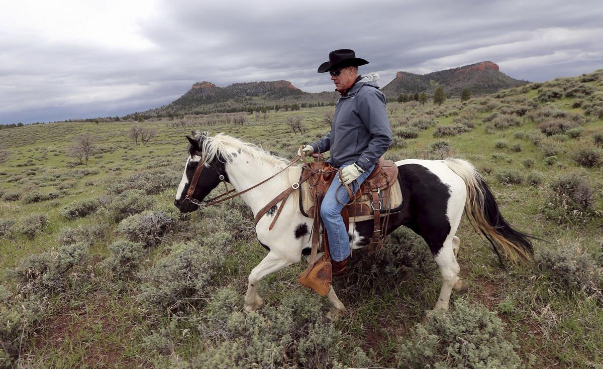 Interior head suggests reducing Bears Ears National Monument