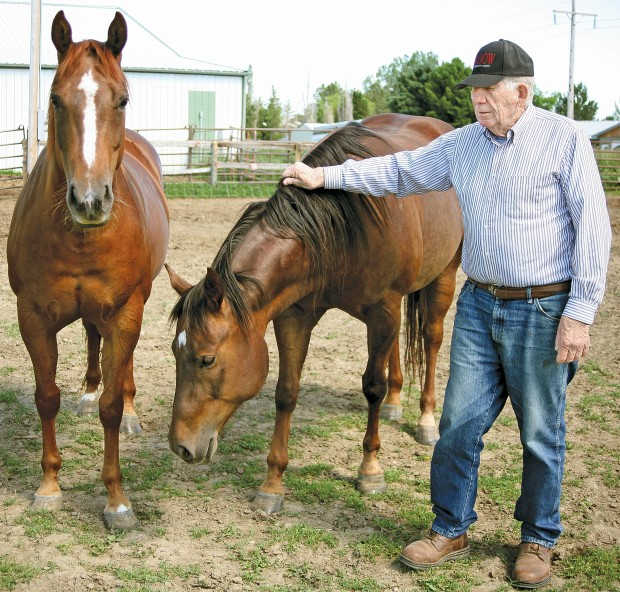 Jim and Ruth Jackson and some of their horses