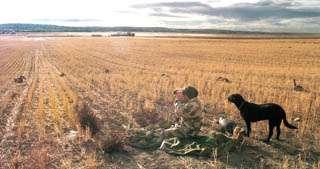 Honker hunting: Expert tactics help lure late-season geese