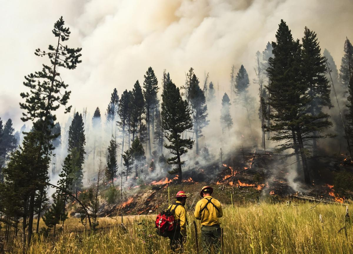 During a fire season that has burned over 1 million acres, the state of Montana has spent $53.7 million battling wildfires.