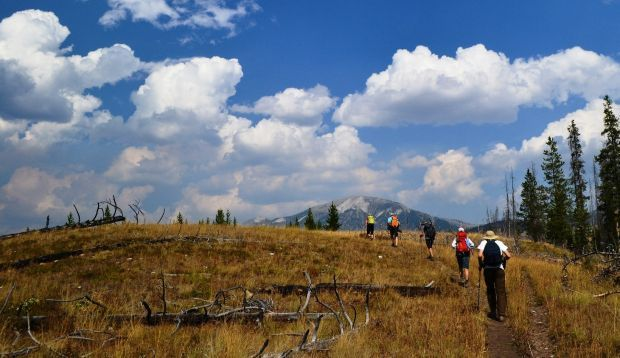 Hikers travel up the trail into the Bob Marshall Wilderness