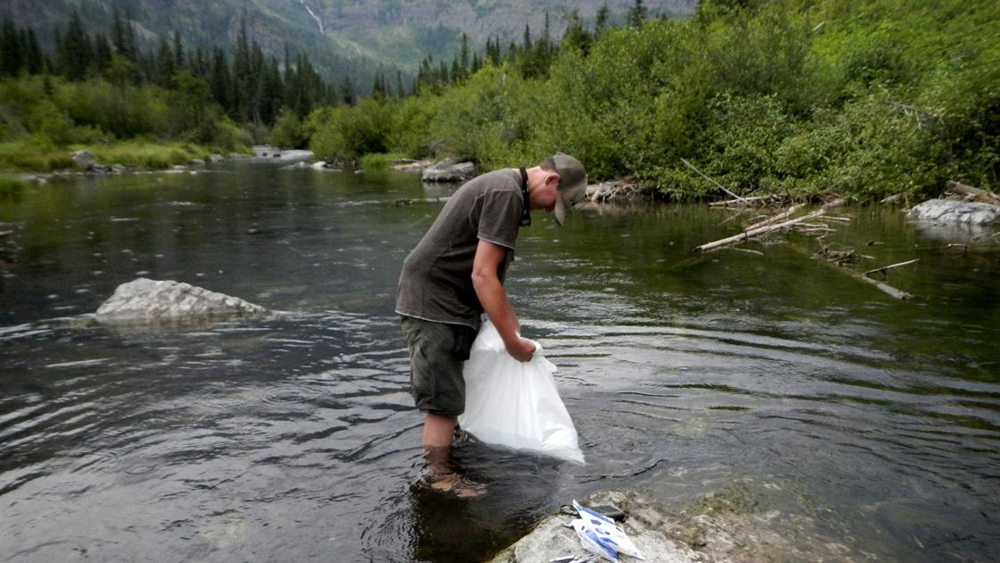 Watery garden of Eden: Lo, bull trout findeth refuge in remote Glacier lake