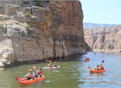 Canyon kayakers