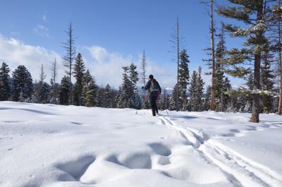 Placid lake cross-country ski