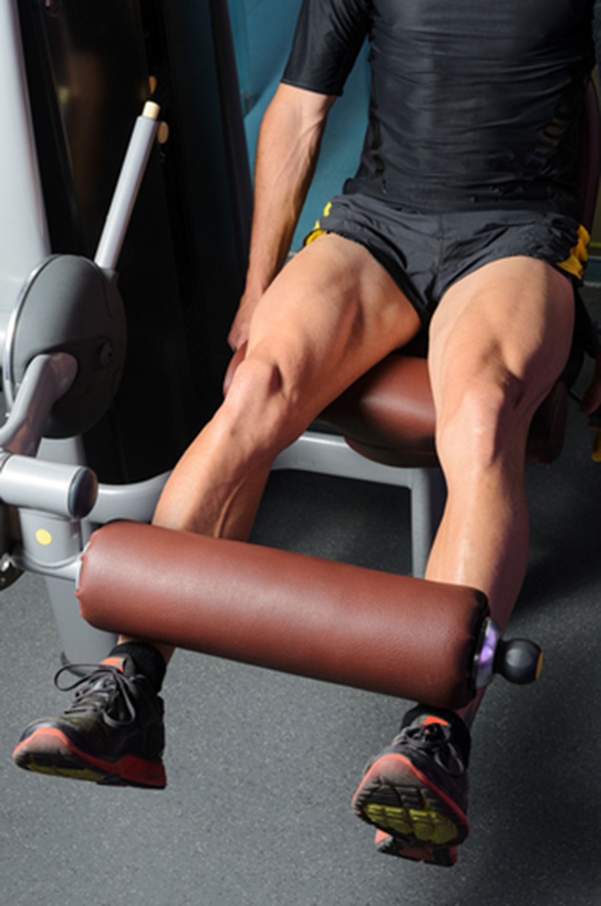 Thigh muscles