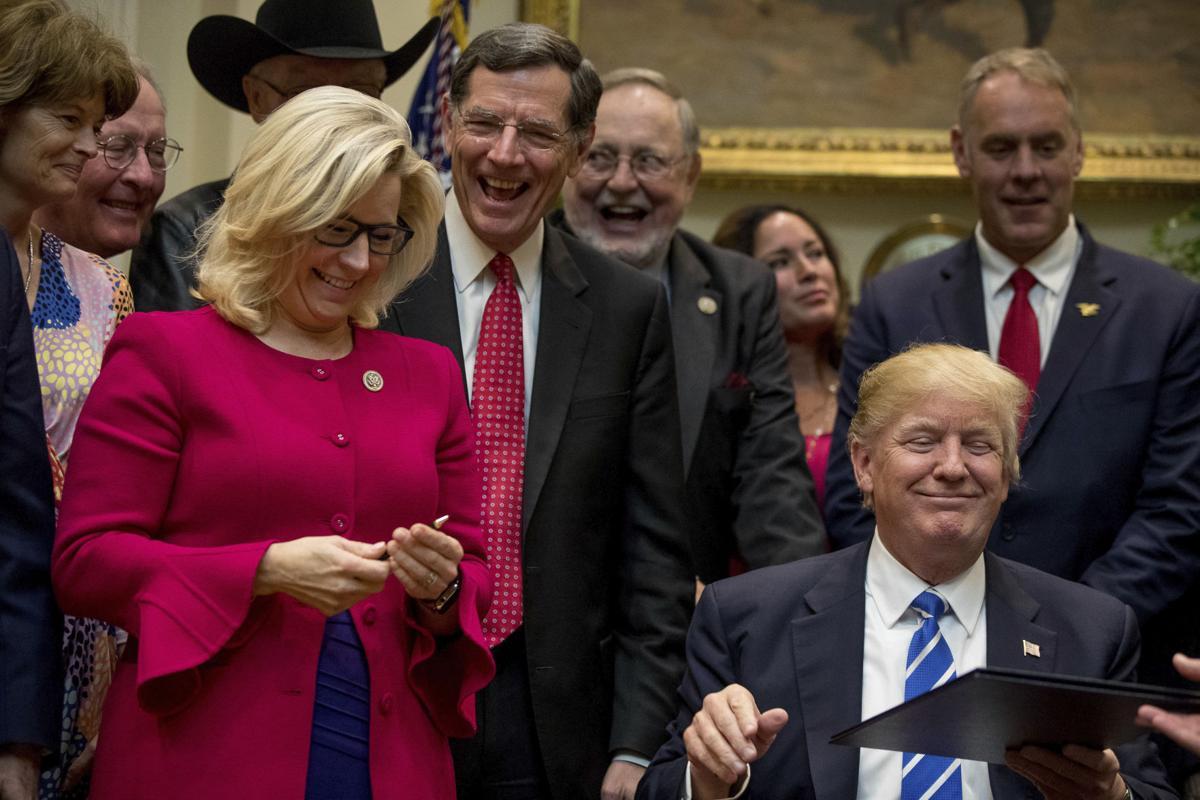 Cheney's first bill passes Congress | Wyoming News ...