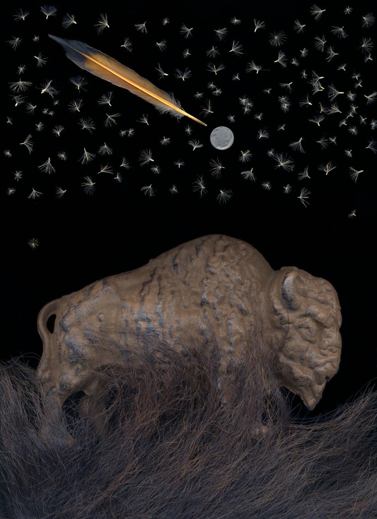 """Audrey Hall's """"Bison and the Milky Way"""""""