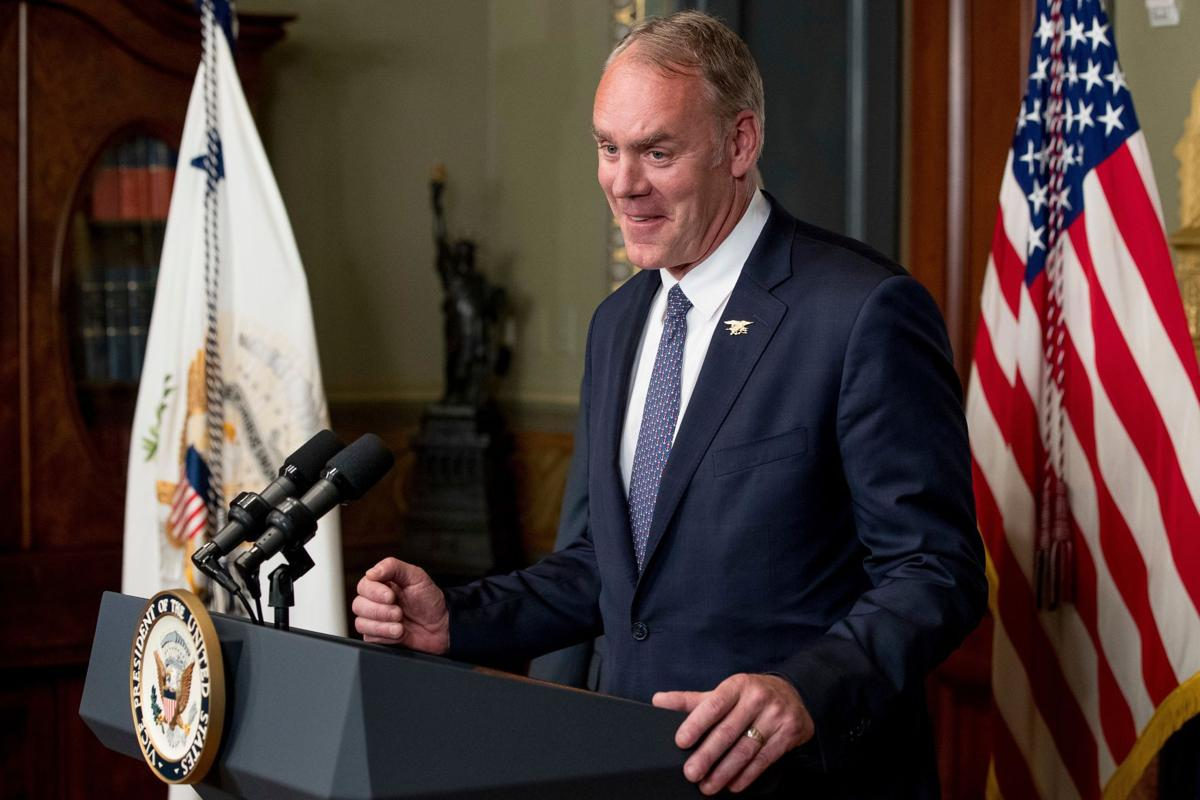 A look at Ryan Zinkes first year as Interior secretary 406