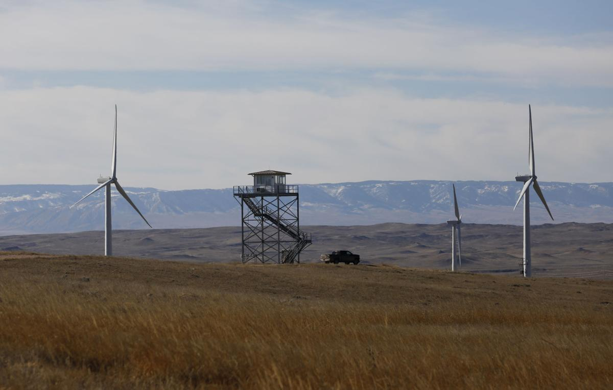 Wind Energy Eagles