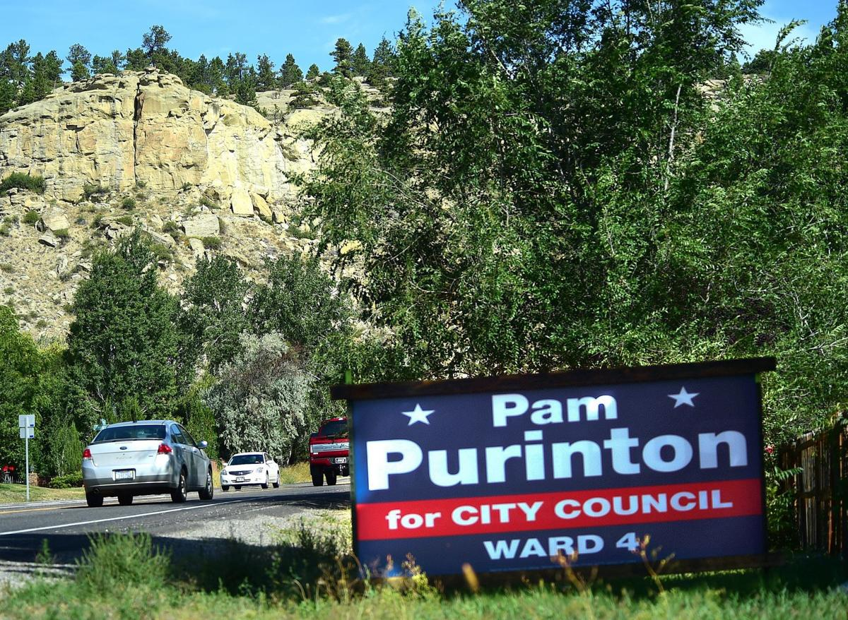 Election sign