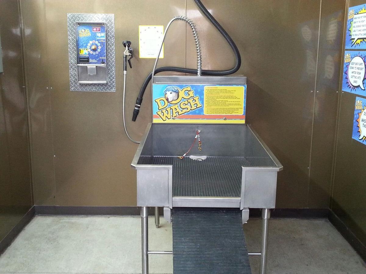 Have you heard laurel car wash owner add dog bath station have dog wash interior solutioingenieria Images