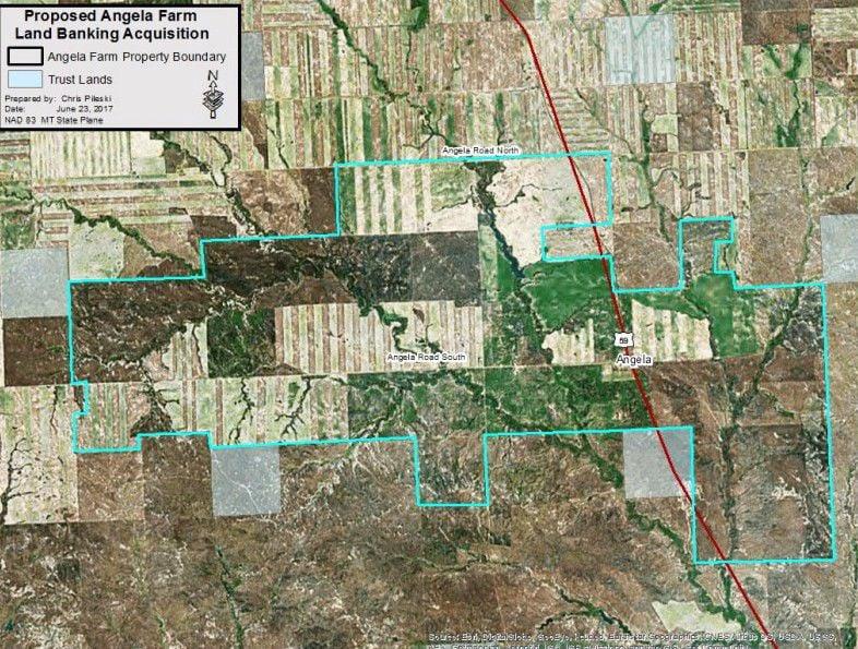 Angela Farms acreage