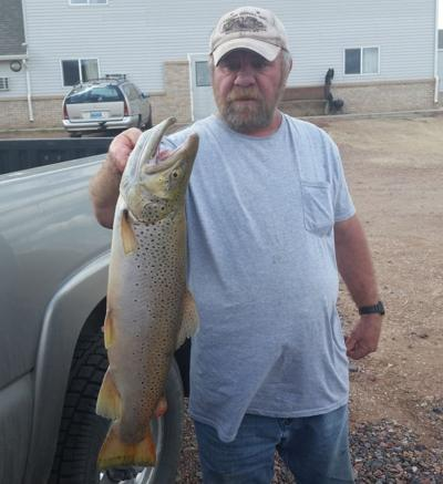 38b55c0754ed Montana fishing report  Runoff nears on rivers  trout still cruising ...