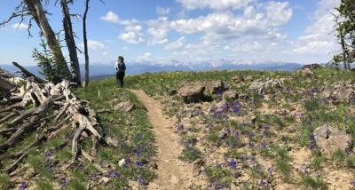 Gallatin Crest offers hikers vast views