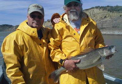 6260d7788587 Skip Weed of Billings holds a fat walleye spawner at Fort Peck Reservoir on  April 13 while helping with the annual egg take. Next to Weed is Ron  Hunziger.