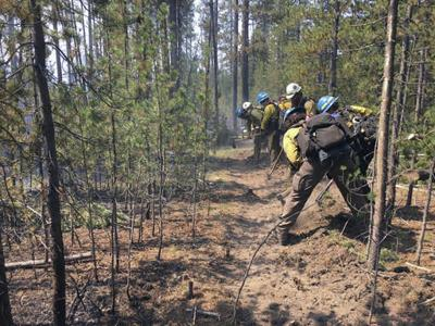 Wildfire near West Yellowstone 20 percent contained