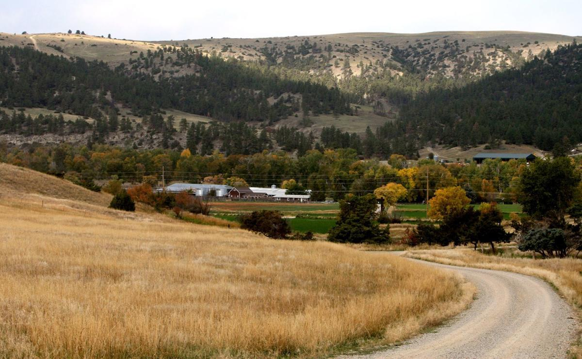 Beartooth Ranch