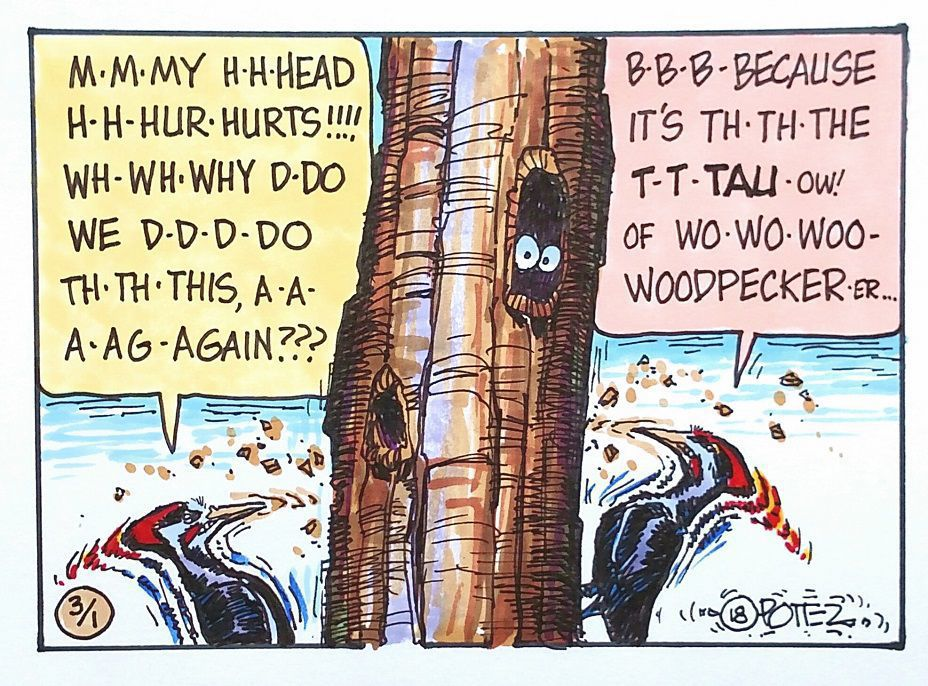 Woody woodpeckers