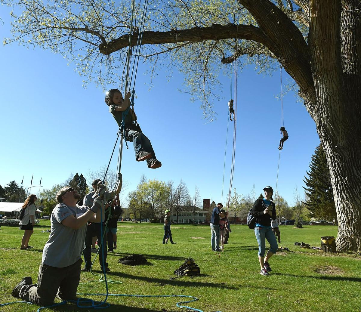 Arbor Day ropes