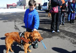 Search and rescue: A doggone good job