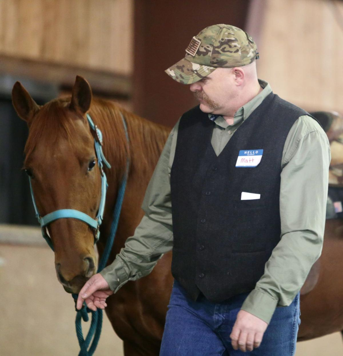 Horse equine physical therapy - Matt Sampley Demonstrates Equine Therapy